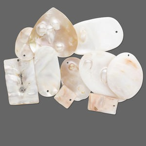 Drop mix, blister shell (bleached), 12x10mm-42x33mm mixed shape. Sold per pkg of 10.