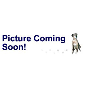 bead, swarovski crystals and stainless steel grommets, crystal passions, rose, 14x9.5mm becharmed briolette with 4.5mm hole (5948). sold per pkg of 12.