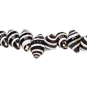 bead, whelk shell (natural), 10x6mm-14x7mm shell, mohs hardness 3-1/2. sold per 16-inch strand.