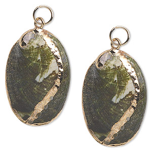 focal, abalone shell (natural) and gold-finished steel, green and iridescent white, 34x21mm. sold per pkg of 2.