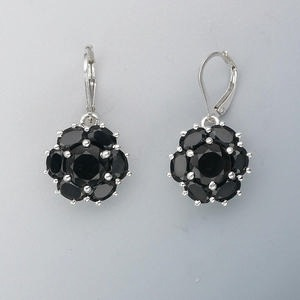 Leverback Earrings Silver Colored Create Compliments